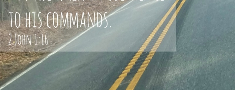 Rumble Strips – Yay or Nay?